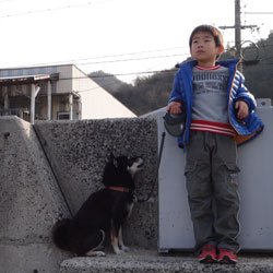 20140104-umigakowai2.jpg