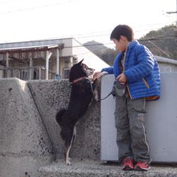 20140104-umikowai.jpg