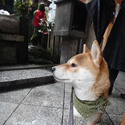 20140214-yuki12.jpg