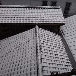 20140214-yuki2.jpg