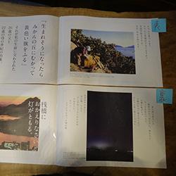 20140311-genko.jpg