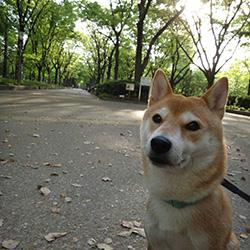 20140427-photo2.jpg