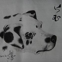 20140625-dog1.jpg