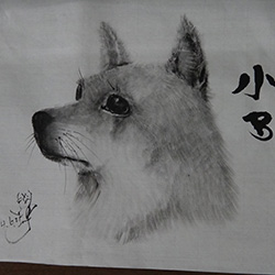 20140625-dog2.jpg