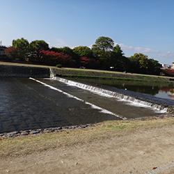 201411111-kyoto.jpg