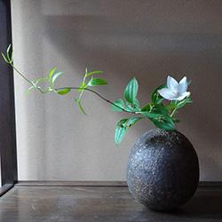 20150606-iemoto1.jpg