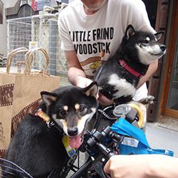 20150608-yuki3.jpg