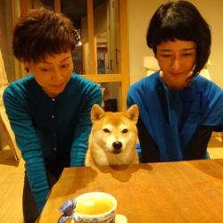 20151214-yuki1.jpg