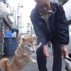 20151231-jiji1.jpg