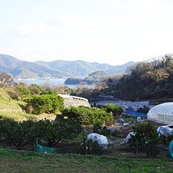 20170105-utumi3.jpg