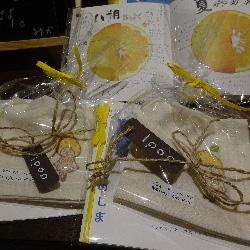 20180820-tateyoko.jpg