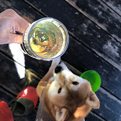 20181028-wine1.jpg