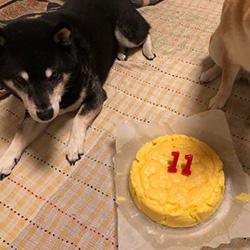 20190509-cake3.jpg